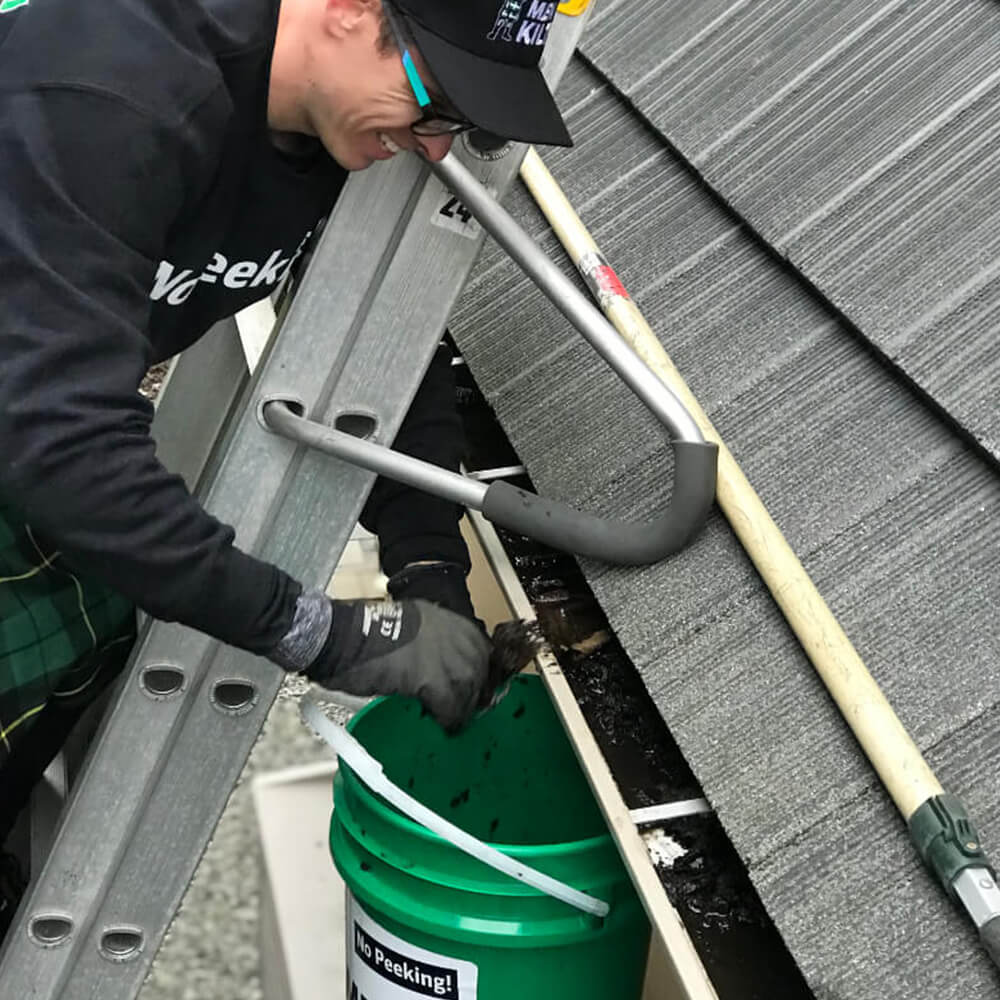 Why is cleaning your gutters so important?